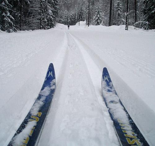 http://www.spredet.no/wp-content/uploads/2008/06/skispor-500.jpg